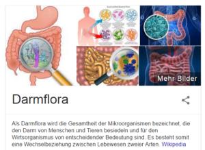 Darmflora Aufbau und Schutz